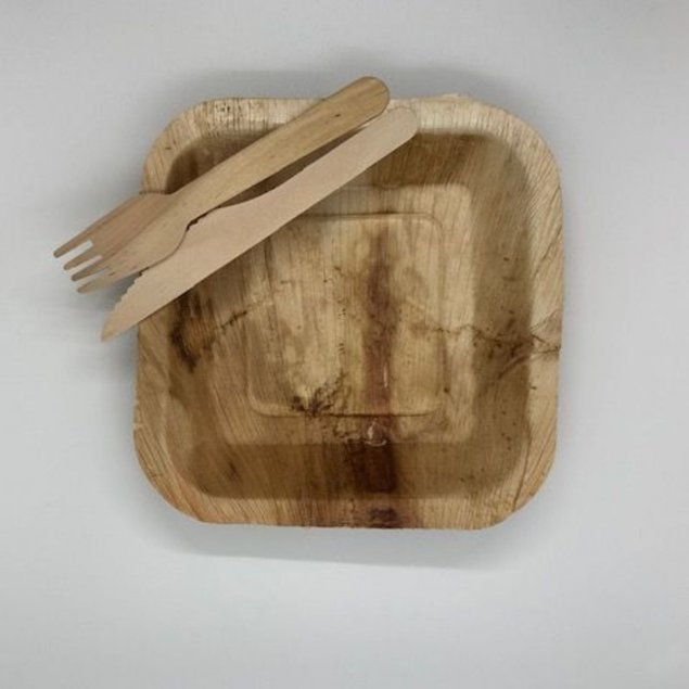 Main plate 9 inch